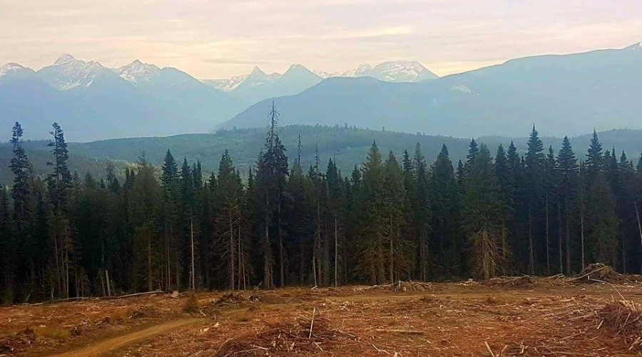 CARIBOO MOUNTAIN OUTFITTERS